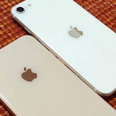 iPhone SE(第2世代)にiPhone 8・7用のケースは使える?注意点や選び方ポイント