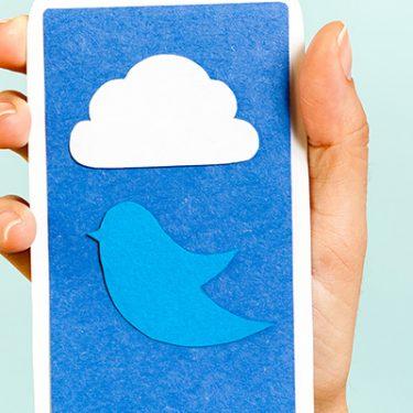 TwitterのFleet(フリート)機能とは?使い方を解説