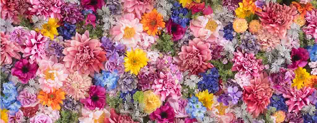 花の名前がその場でわかる!「ハナノナ」とは?