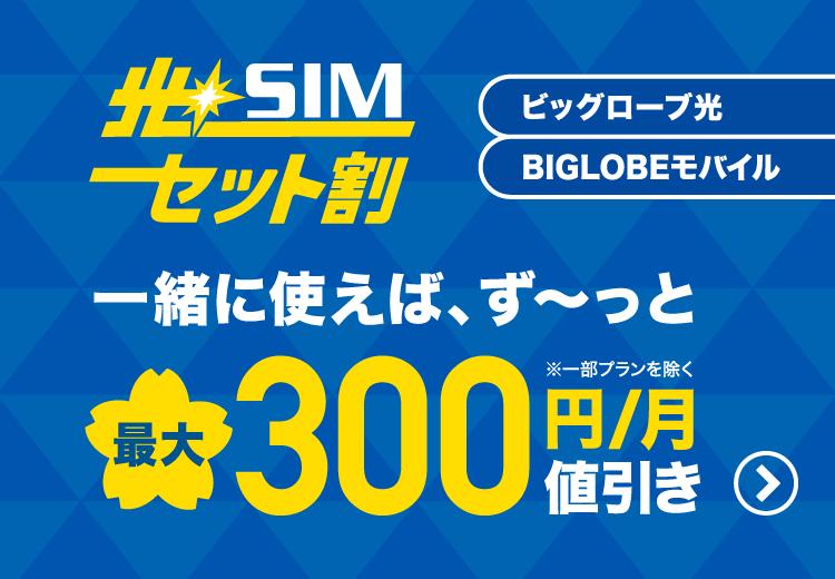 対象の光回線とBIGLOBEモバイル(タイプD)をまとめて使うと、毎月最大300円割引!