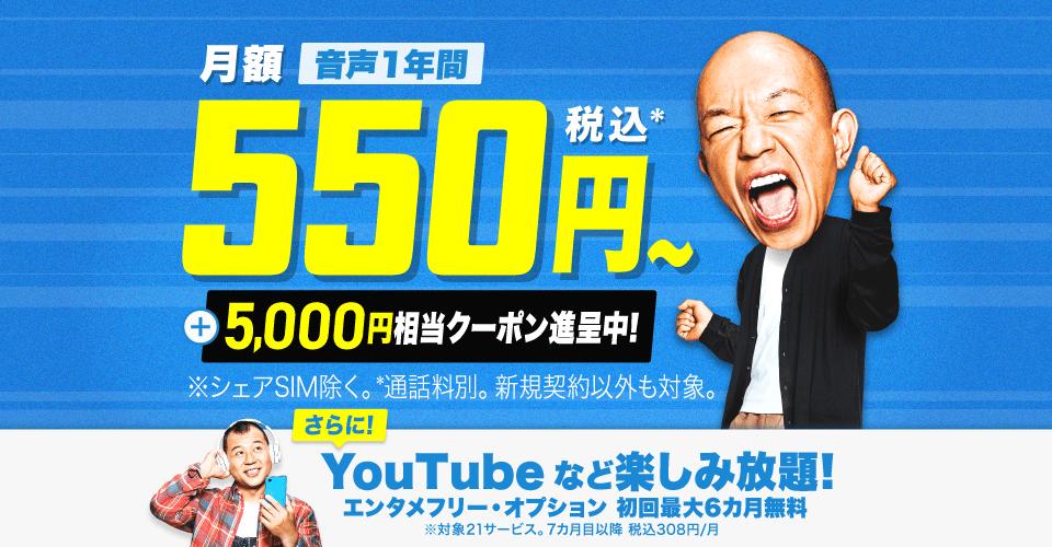 音声通話SIM3ギガ 6カ月間月額400円(税込440円)(通話料別)